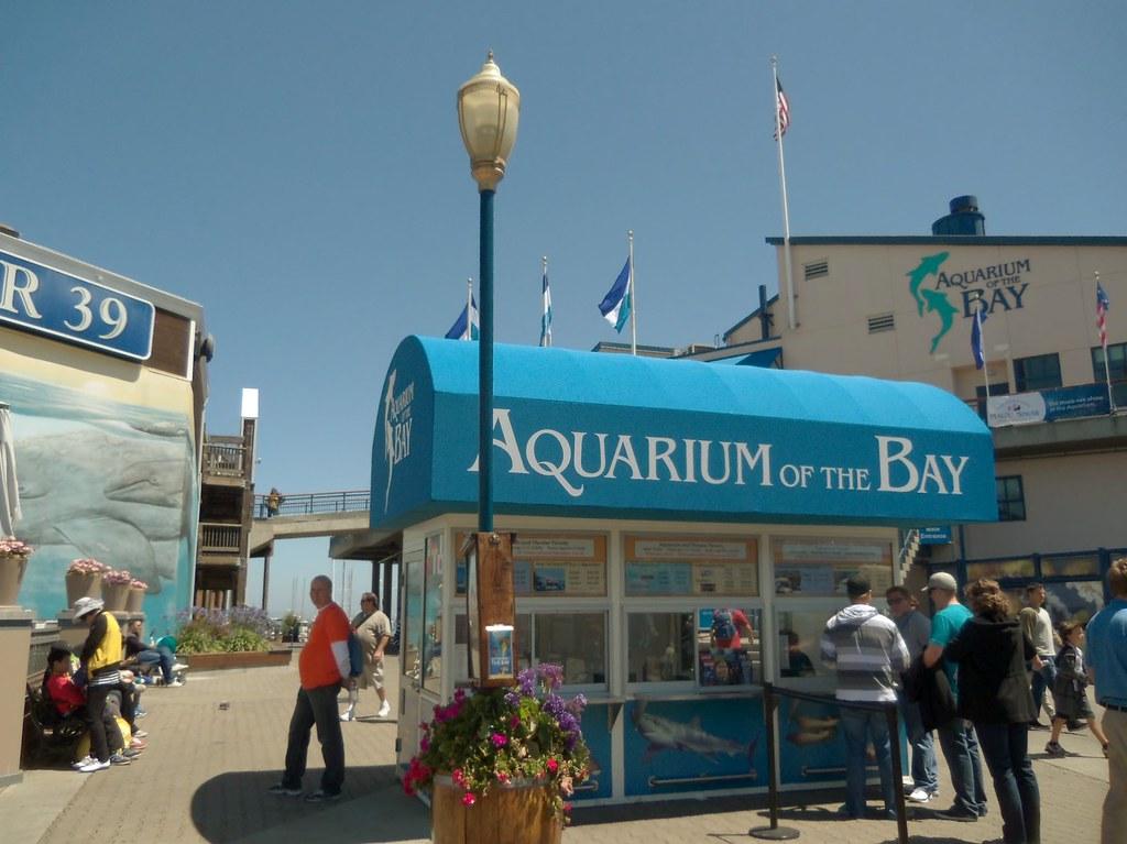 Aquarium of the Bay   San Francisco's pier 39   Clotee ...