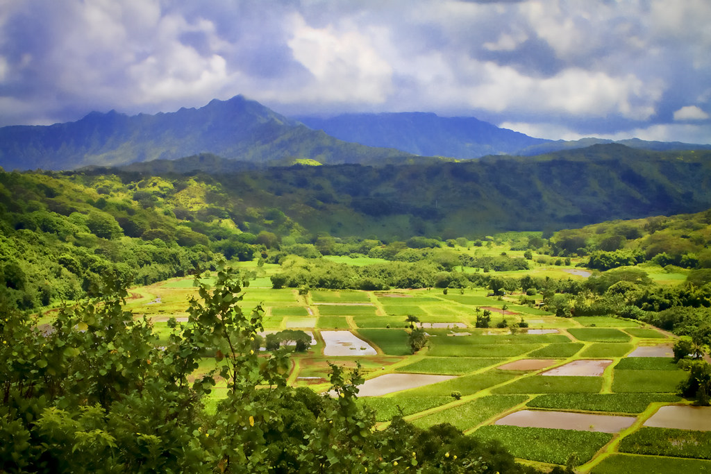Scenic Kauai Kauai Hawaii Mark Chandler Flickr