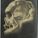 Old/Antique Skull Optical Illusion Postcard