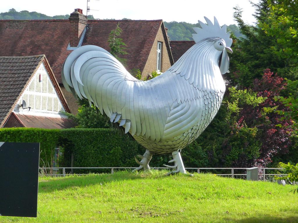 Dorking Cockerel Doorking A24 Road Surrey Uk Famous