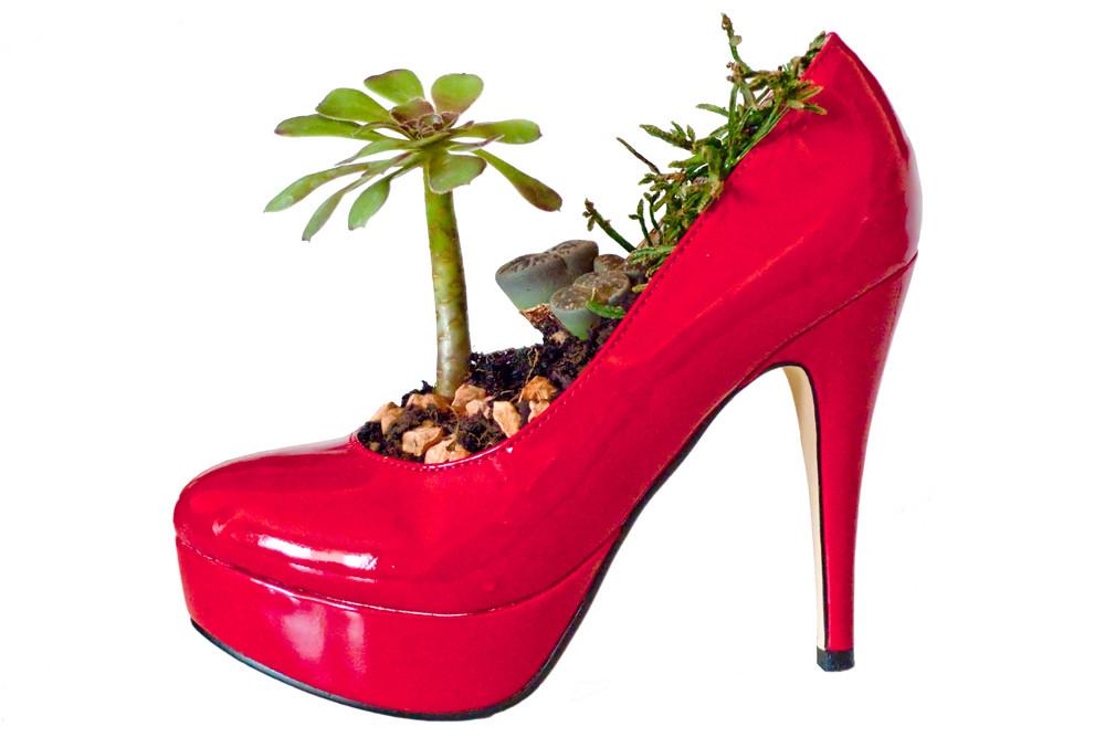 New Shoes Paolo Nutini Lyrics Meaning