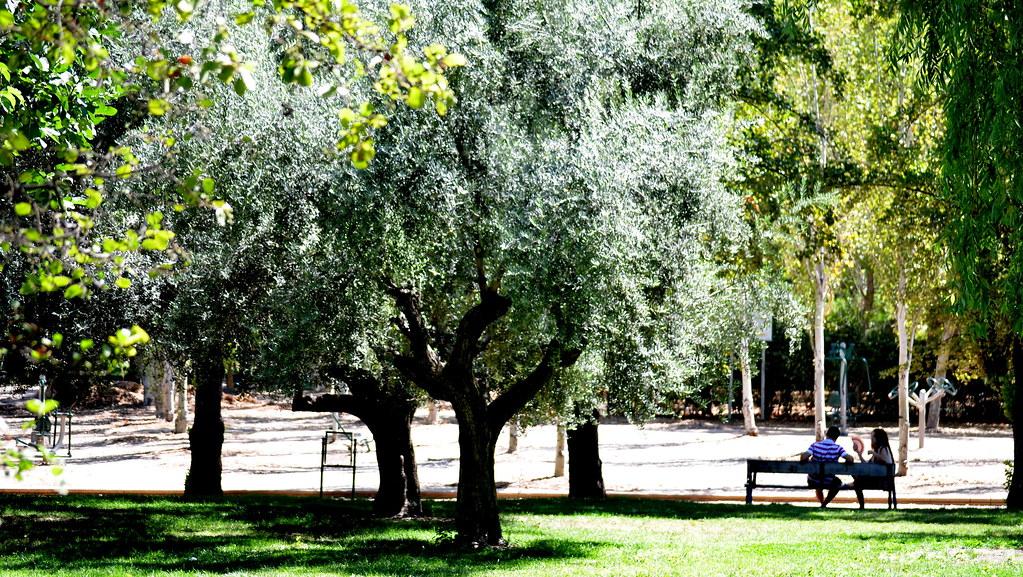 Parque Garcia Lorca-Granada