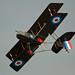 Airco DH.2 - 8
