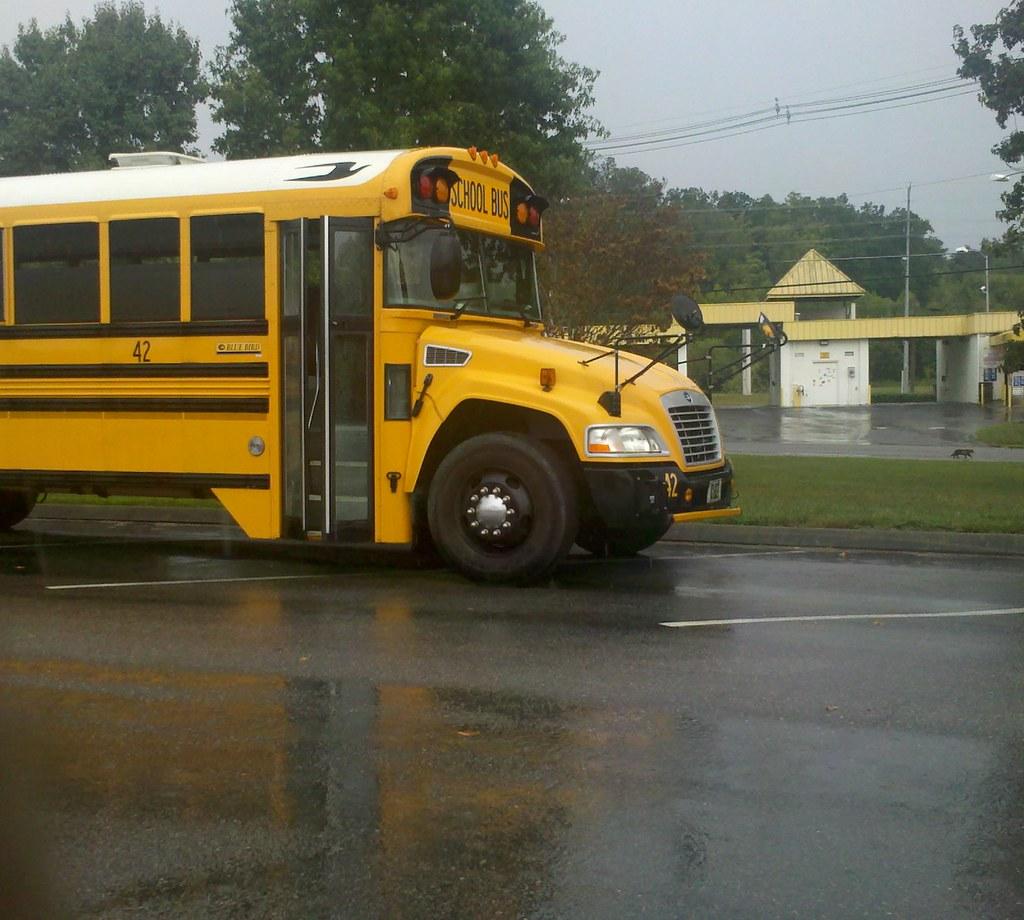 school bus history school bus 42  2011 bluebird vision Magic School Bus Teacher Teacher Special Education Bus