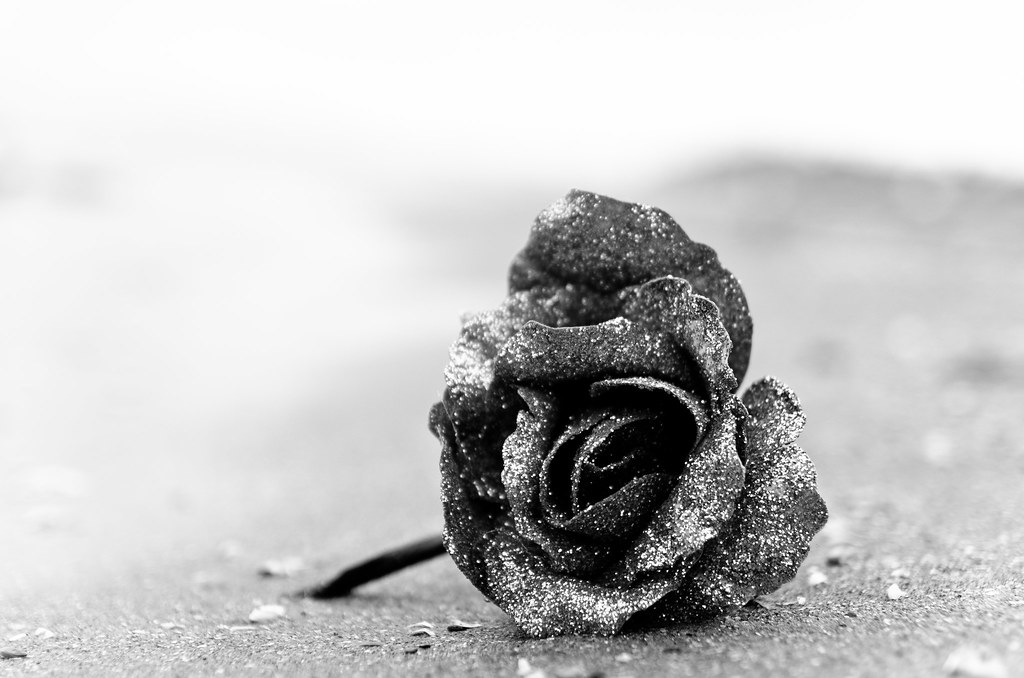 "Artificial Concrete Rose | ""Grow through the adversity ..."