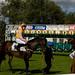 Windsor Races #6