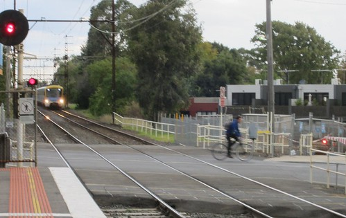 Cyclist risks death riding out in front of train (2/2) | by Daniel Bowen