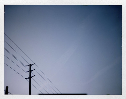 'Roid Week 2012 - Day Four | by .:Axle:.