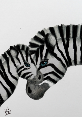 Mom and Baby Zebra | by AlisonMWood