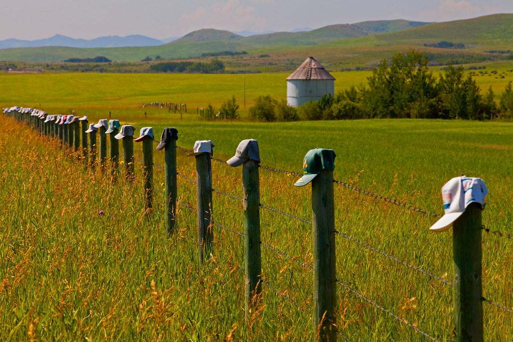 How Many Miles Should A Used Car Have >> Hats | Along the Cowboy Trail on Highway 22 is a farm that
