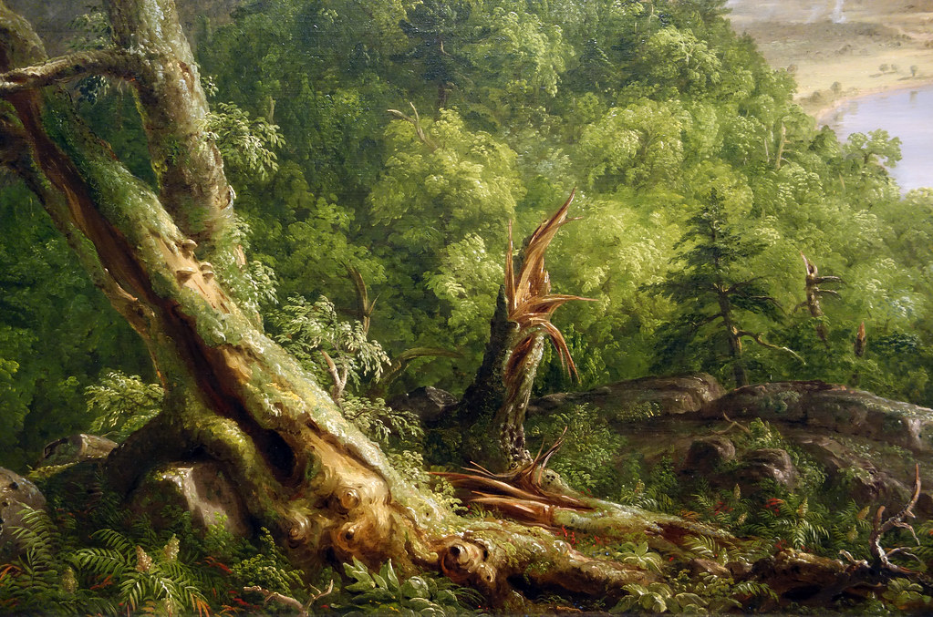 Thomas Cole's The Oxbow: a lush riot in the land of plenty