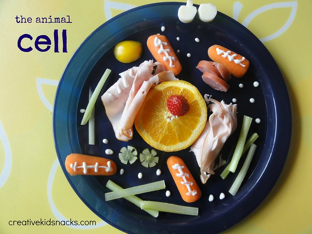 Make a cell out of healthy foods from the fridge great for Cuisine 9269