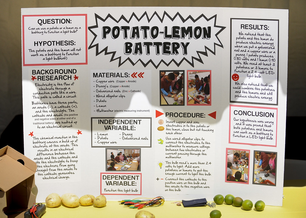 "2013 Health Science Expo | ""Potato- Lemon Battery"" one of ..."