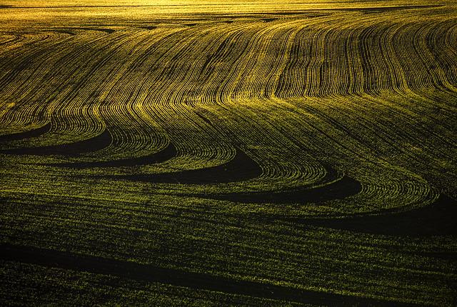 fertile land - photo #38