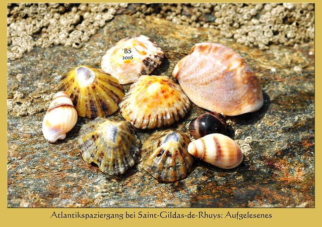 Bretagne - Saint-Gildas-de-Rhuys - Spaziergang am Meer Strand Atlantik, Foto: Brigitte Stolle 2016
