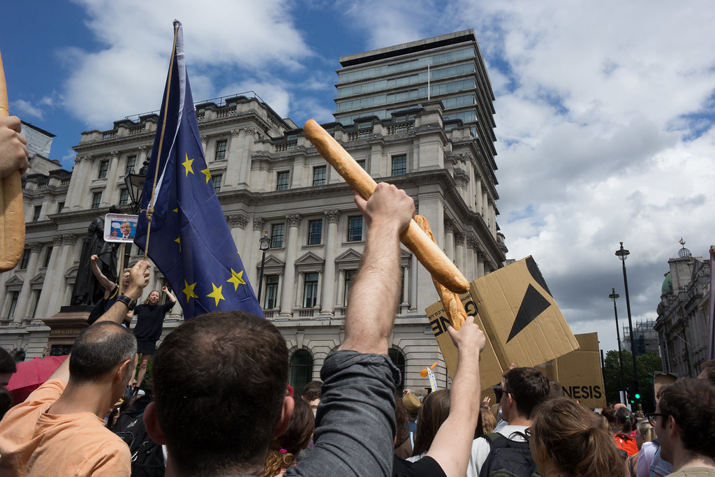 Image result for Brexit Protests