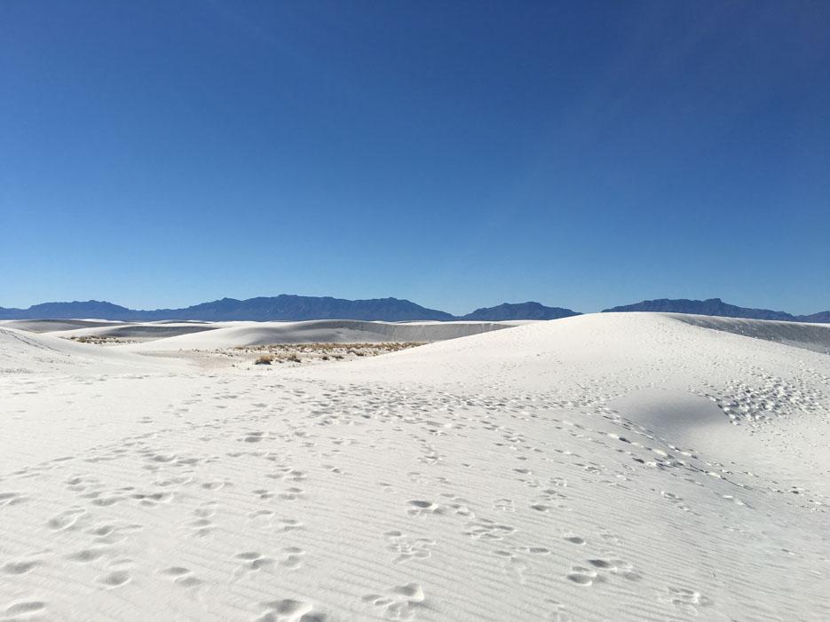 111915_Sand19