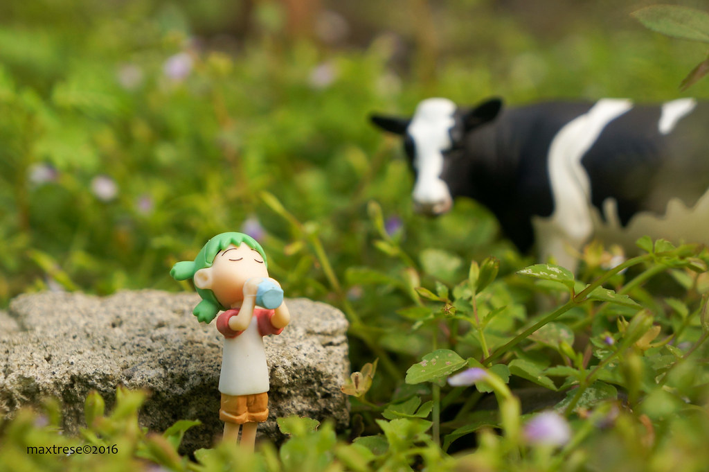 Yotsuba gashapon drinking milk with cow