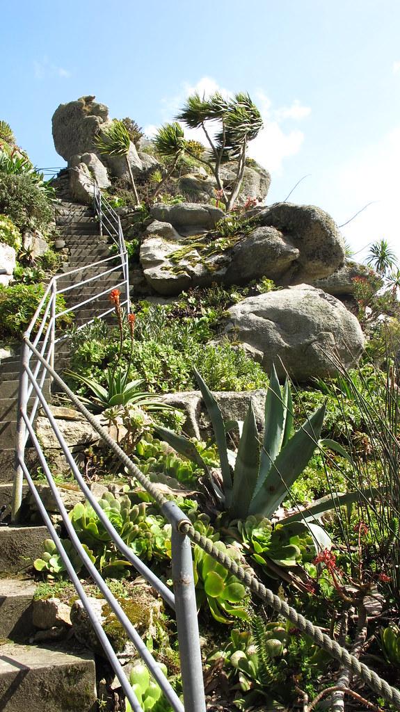 Jardin exotique de roscoff jardin remarquable 2013 flickr for Jardin remarquable