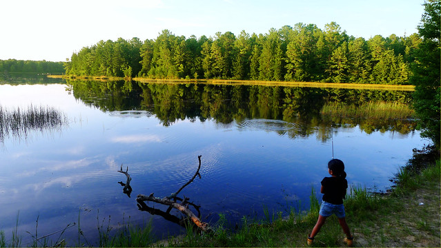 Fishing at lake absegami bass river state park nj for Fishing lakes in nj