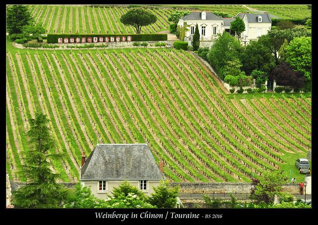 Ein Abendspaziergang entlang der baumgesäumten Vienne. Ein kleines Idyll. Und nachdem wir heute Vormittag während der Schlossbesichtigung die hübschen Weinberge des Ortes entdeckt haben, lassen wir den Abend bei einer Flasche Rotwein aus Chinon ausklingen. Mmmhhh! Wein aus Chinon - à votre santé ! Foto Brigitte Stolle 2016