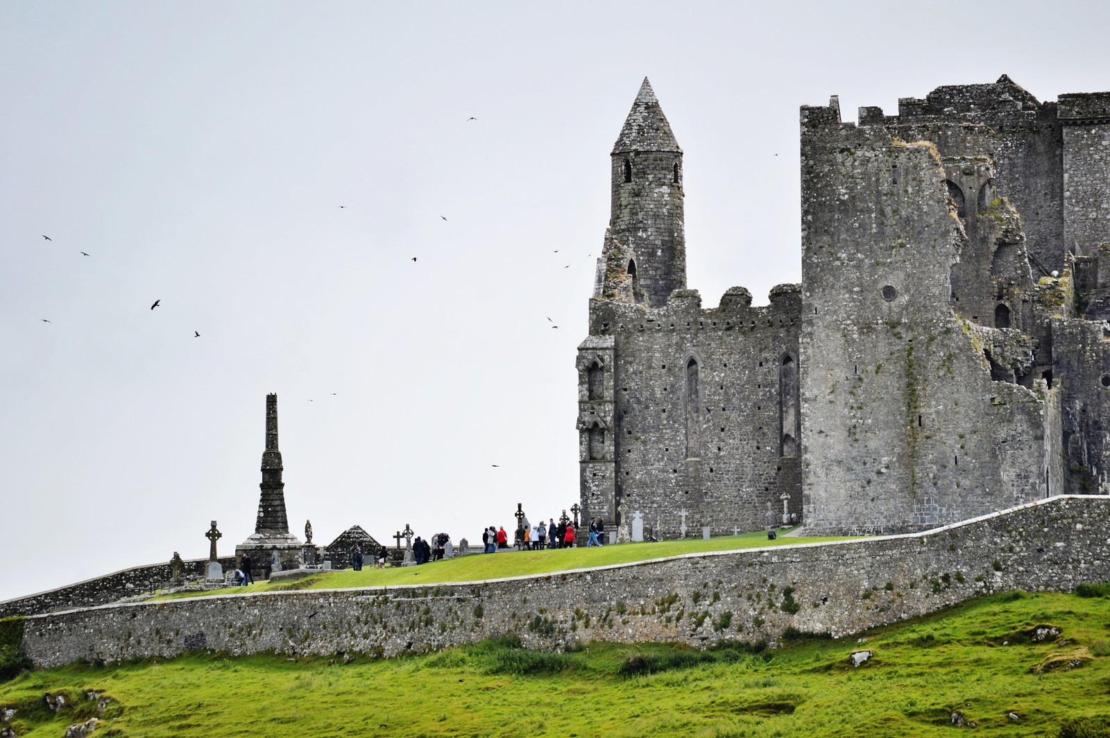 The most beautiful ruin in Ireland