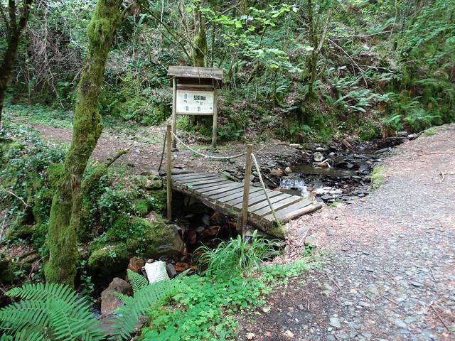 Puente en la Devesa da Rogueira en O Courel