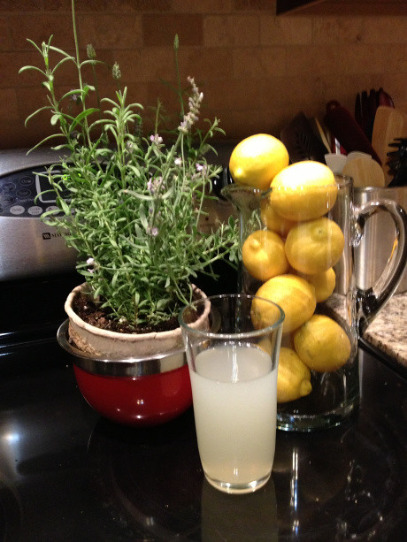 Organic Lavender Infused Lemonade | Put your herb garden to ...