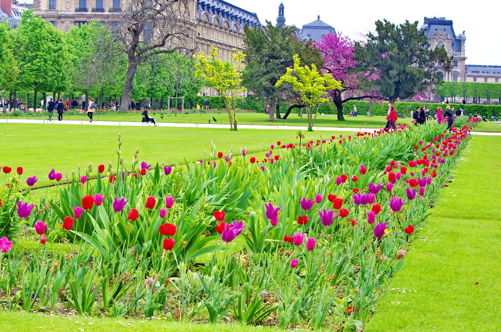 Paris le jardin des tuileries 21 pascal poggi flickr for Le jardin de domont