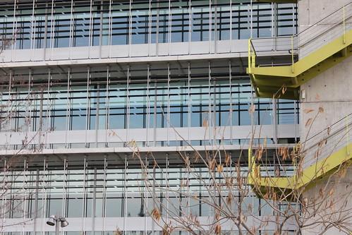 2014.02.02.071 - SEVILLA - Campus Palmas Altas