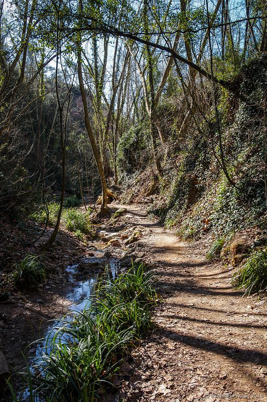 El torrente y el camino
