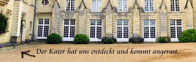Château Ussé befindet sich in Privatbesitz und wird von Herrn Herzog de Blacas bewohnt - und von einem sehr anhänglichen, aufdringlichen, dominanten, zärtlichkeitsbedürftigen Schlosskater. Wir gehören zu den ersten Besuchern des Tages; entsprechend ausgehungert nach Streicheleinheiten werden wir begrüßt. Man streicht um unsere Beine, springt uns auf den Schoß und markiert uns ausgiebig mit Pheromonen. Ein liebes Tier :-) Foto: Brigitte Stolle 2016