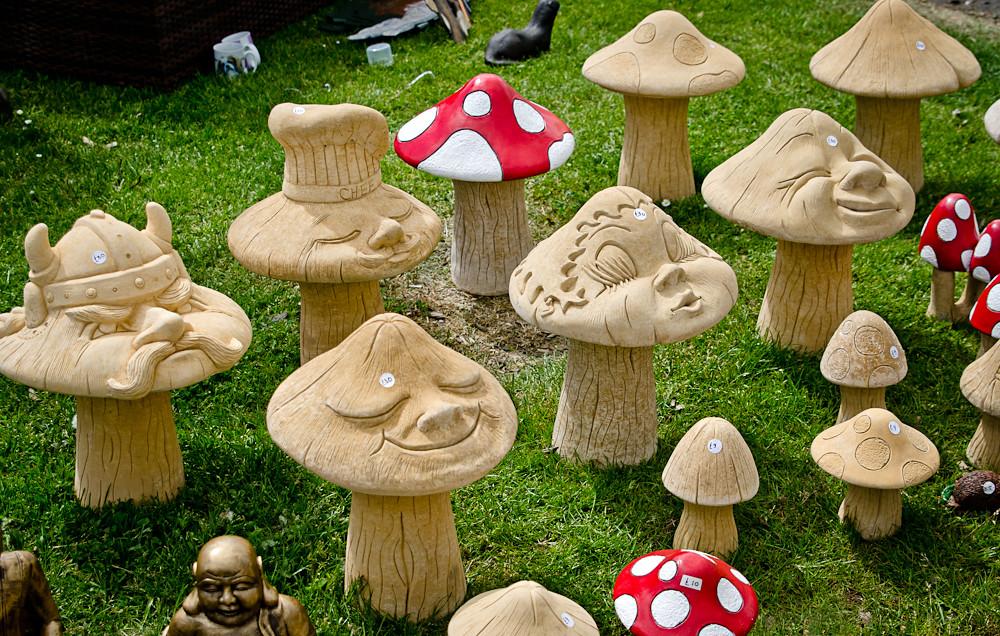 Garden Toadstools | Gardening Scotland 2013. Photo credit ...
