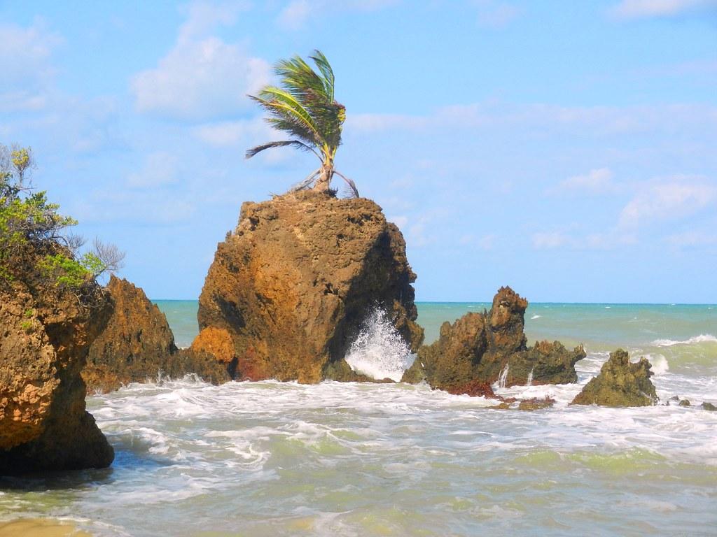 Praia de Tambaba/PB   Praia de tambaba, Paraiba, Praia