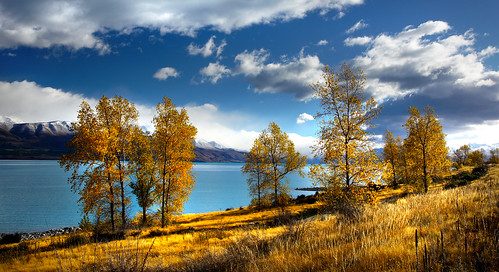 Autumn Lake Pukaki NZ
