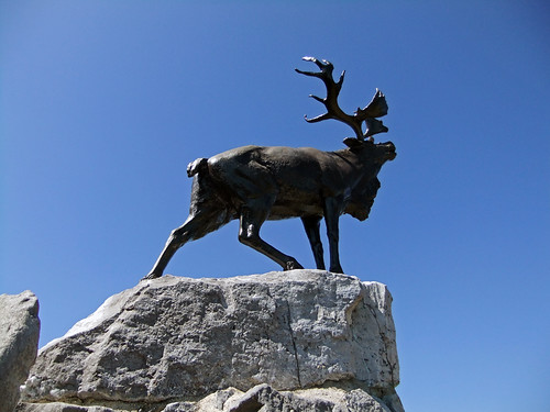 The 'Solitary Caribou' sculpture that represents the soldiers of Newfoundland