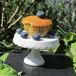 Blaubeermuffins, Baker & Spice