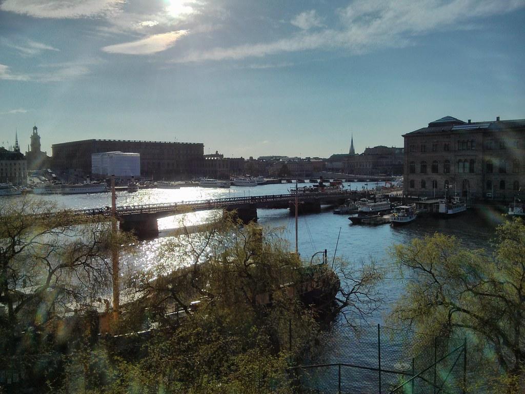 salong tree eskort stockholm forum