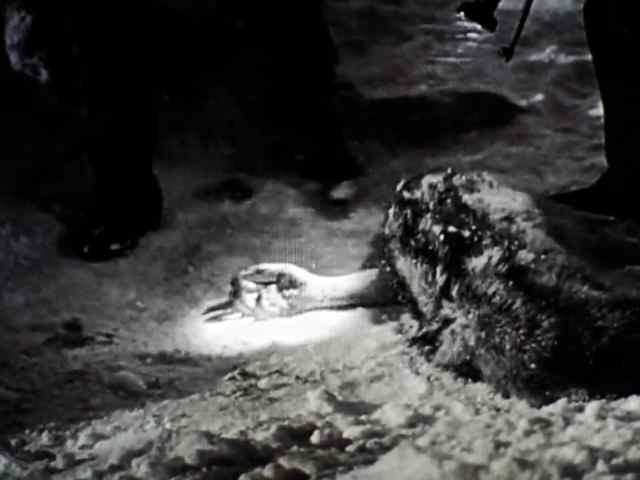 The Thing from Another World (RKO, 1951). The story in Screen Captures.