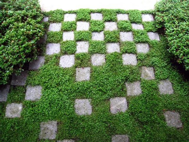 Jardin japonais en ville an album on flickr for Plan jardin japonais