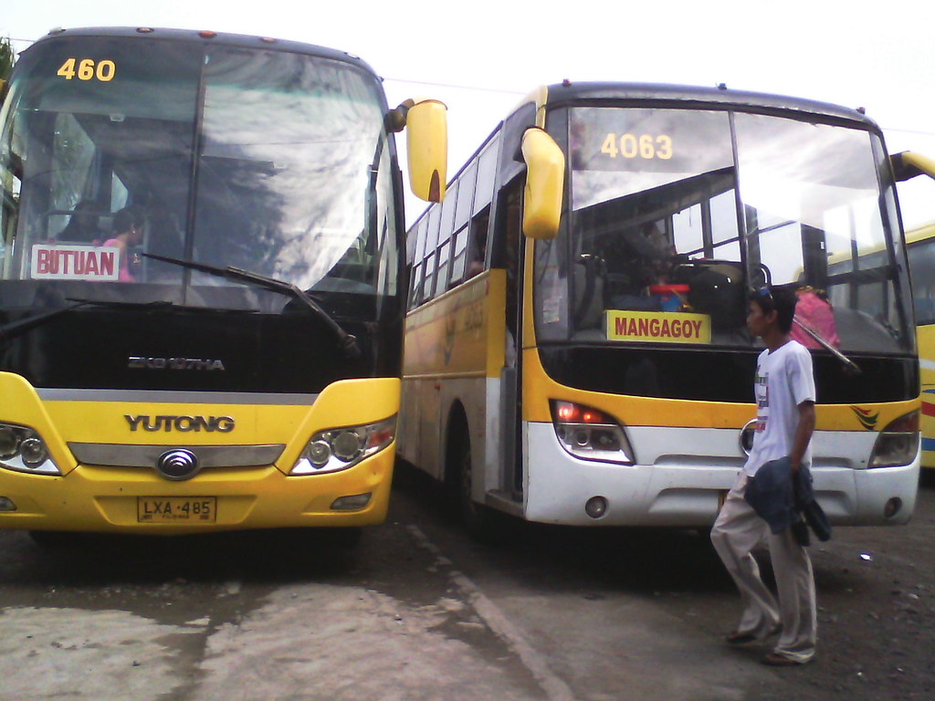 Bachelor Tours Bachelor Express Bus No 460 Route