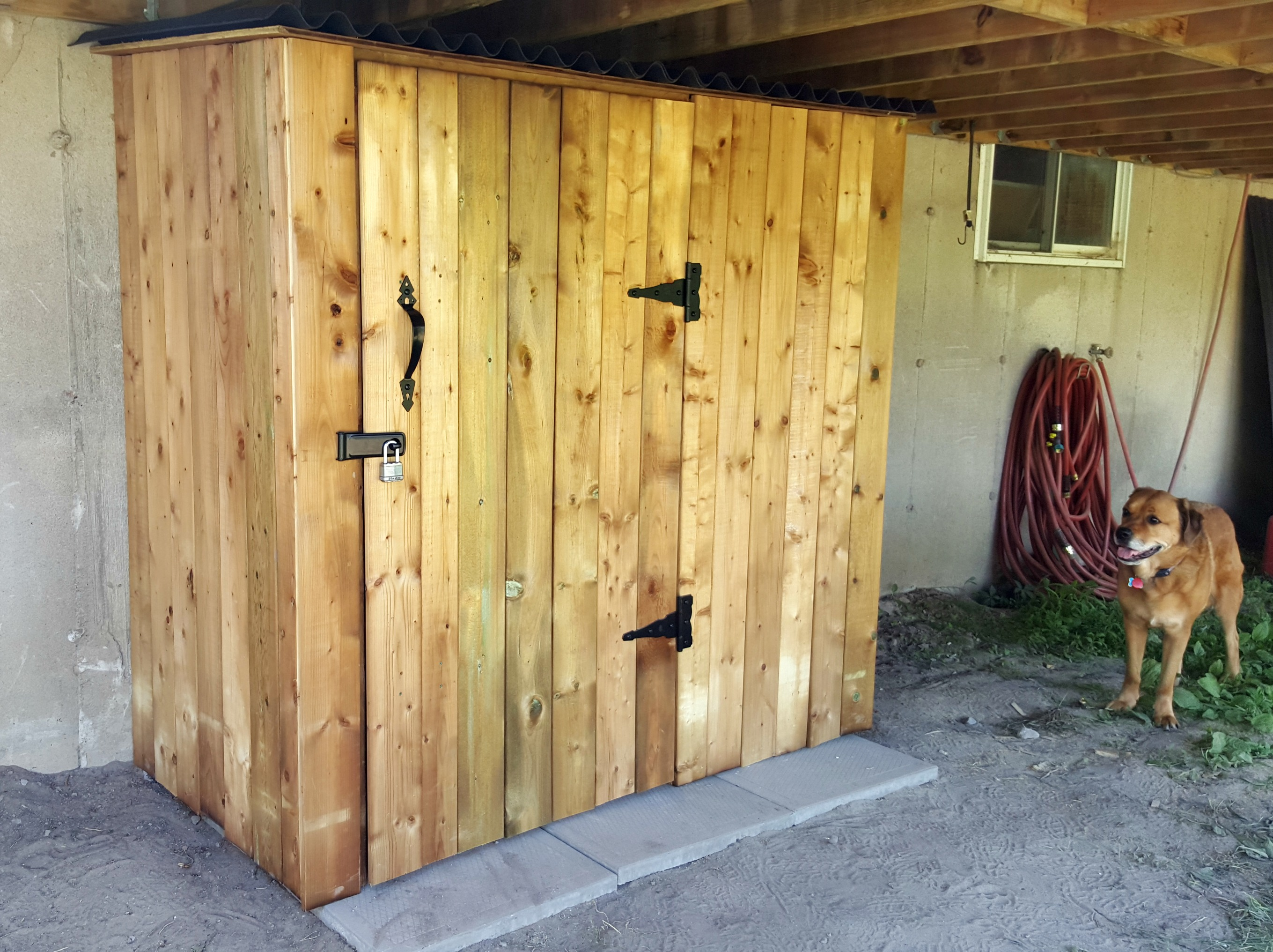 DIY Tool Shed (and a cute dog)