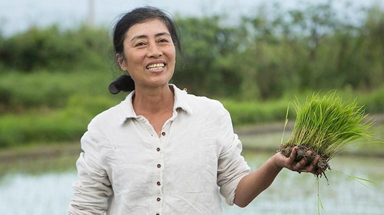 族人的期待是舒米咬牙繼續耕種海稻米的動力。圖片來源:舒米‧如妮。