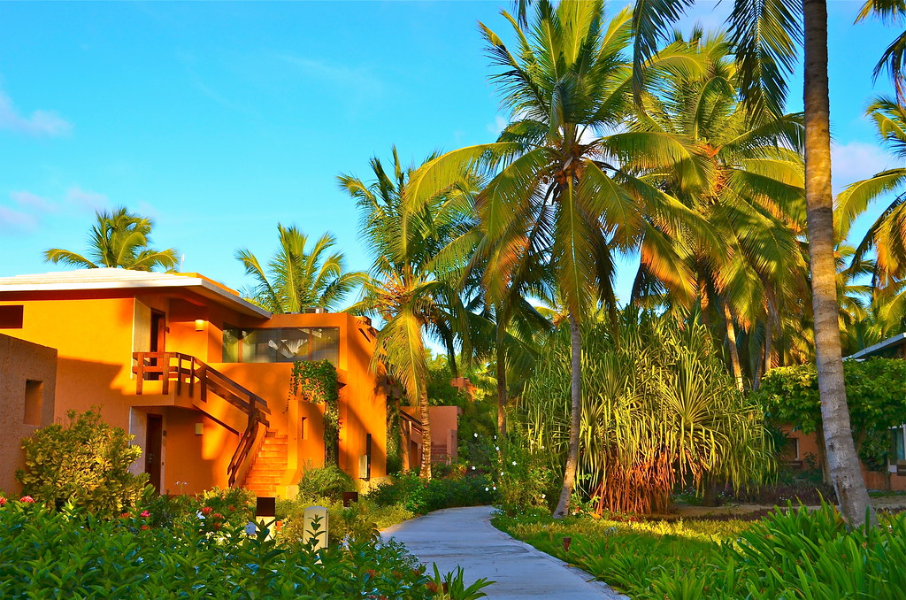 Punta Cana Hotel Grand Resort Arena Blancka