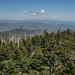 Clingmans Dome, South View