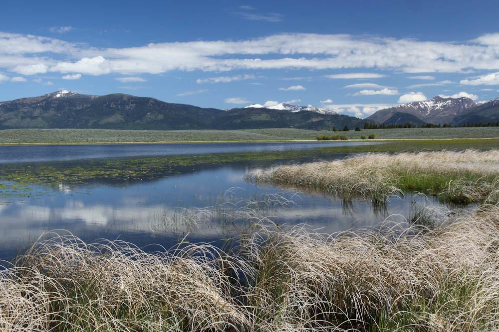 Montana Brown photos