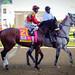 Kentucky Derby 2014-0202