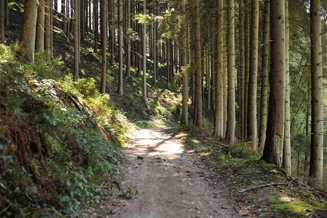 Nature S Path Gluten Free Trailmix Bar