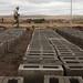 Lesotho - Metolong Dam Toilets&Brick Making - John Hogg - 090625 (4)