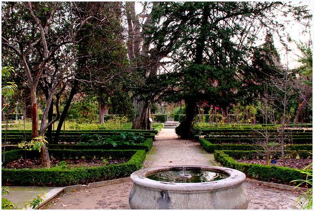 Invierno en el jard n bot nico de madrid flickr photo for Jardin botanico madrid horario